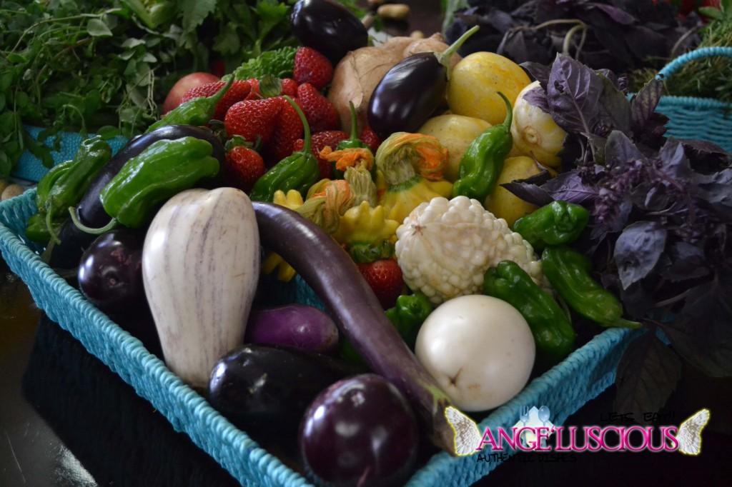 purple, white, japanese eggplant, shishito peppers, squash blossomsdsc_0062