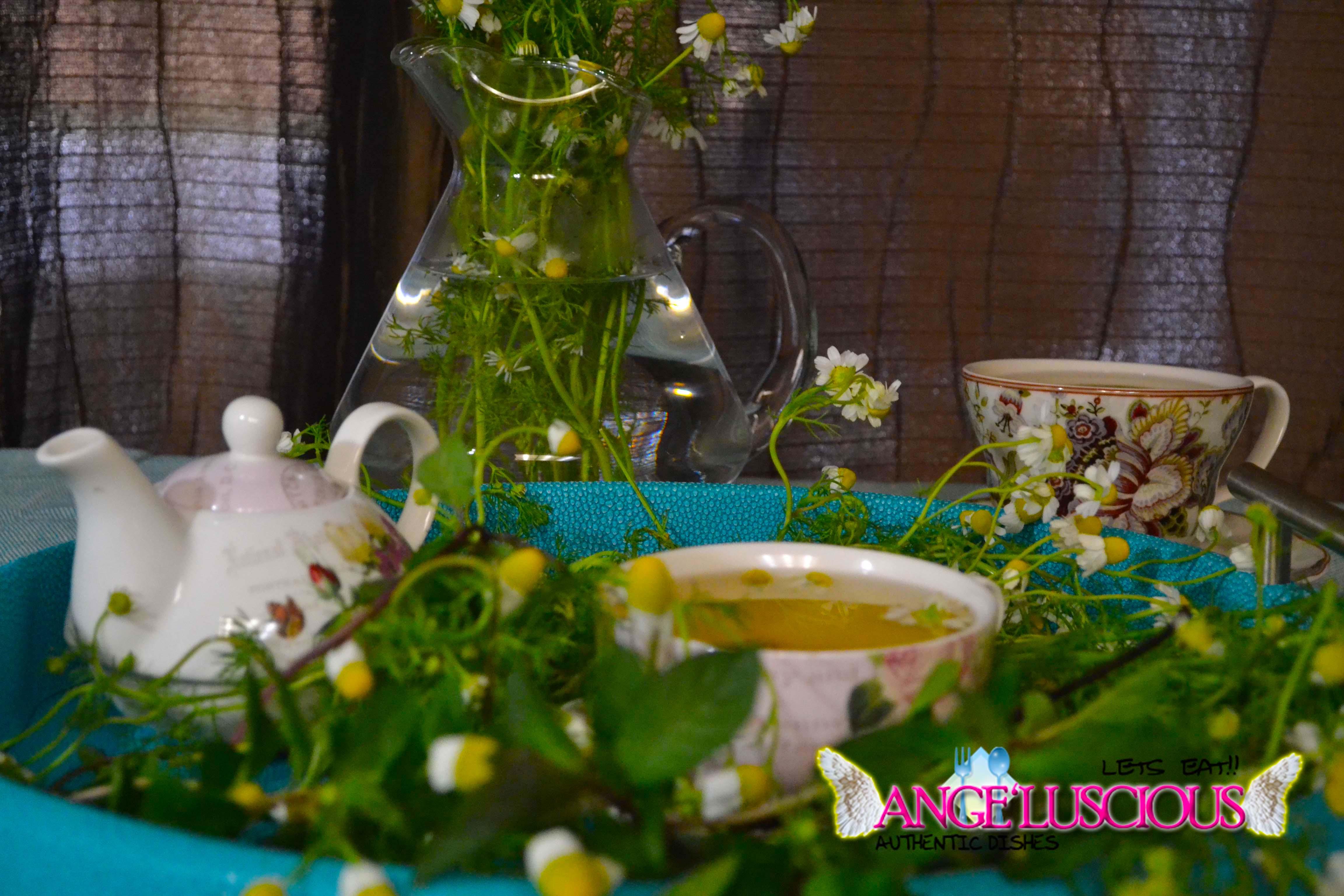 chamomile tea DSC_0858